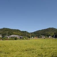 DSC_1880-004.jpg